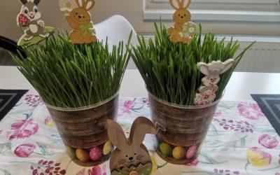 Jarní pozdravy od dětí